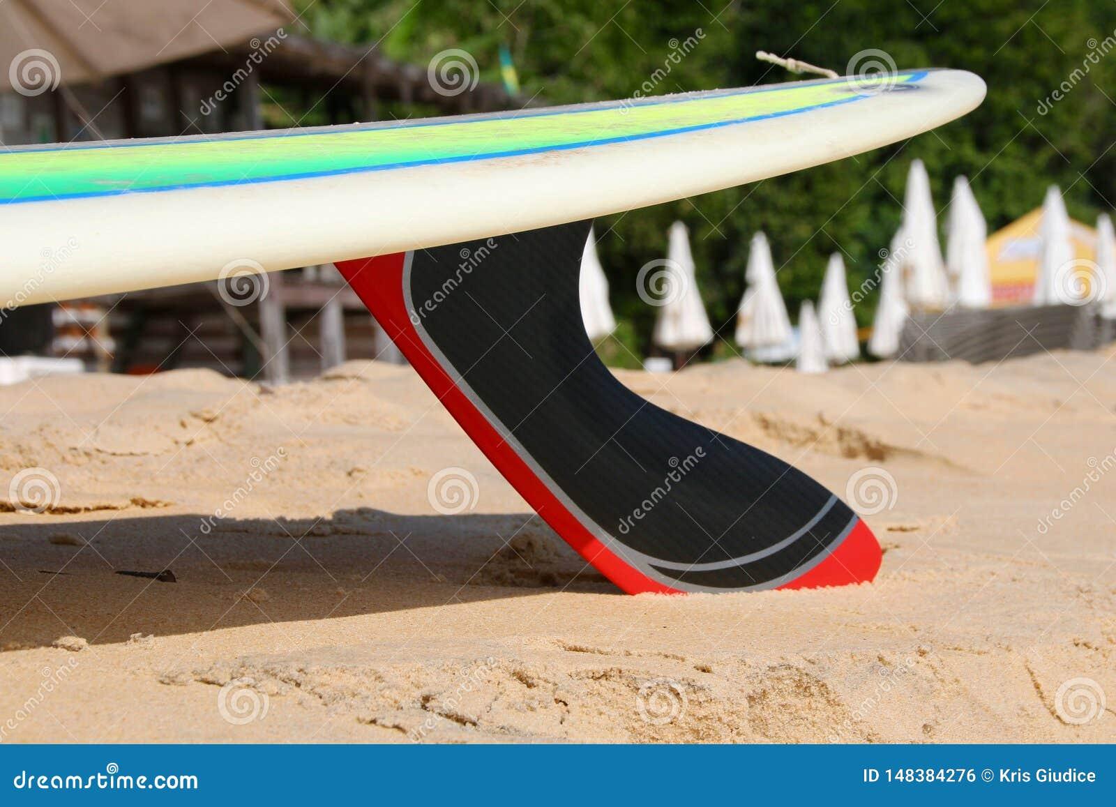Surfboard z węgla żebrem na plaży