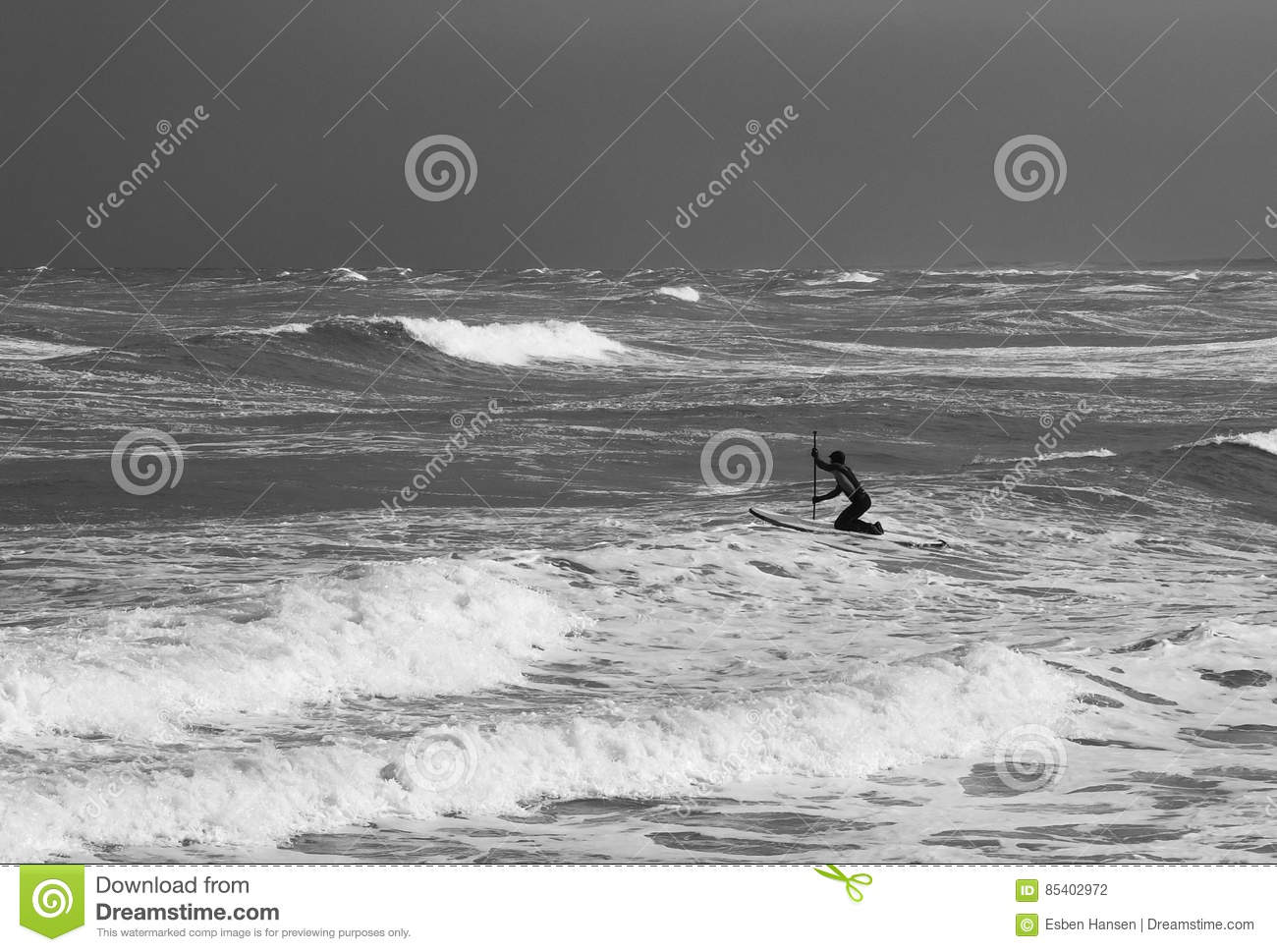 Surfer paddles out to the waves