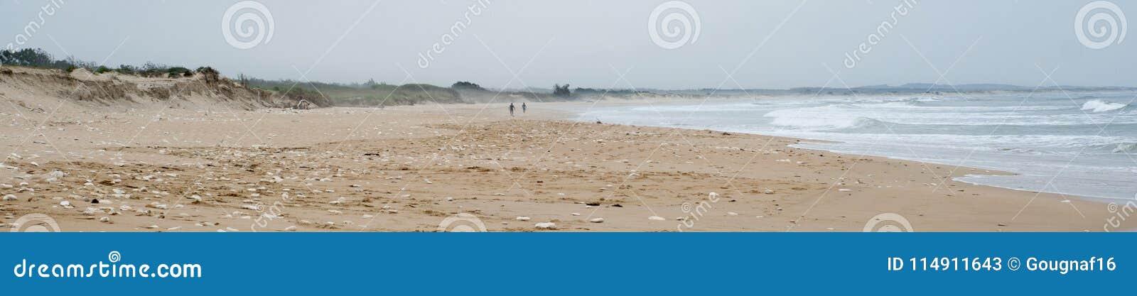 Surfers on a beach on Oleron Island, France