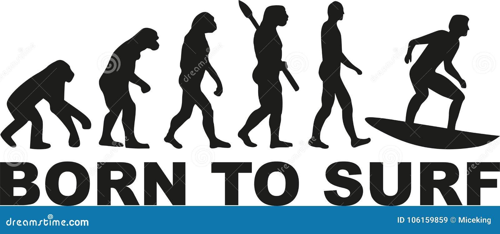 Surfing evolution - born to surf