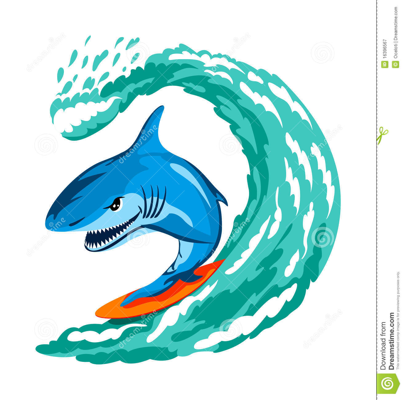 Surfing Shark Royalty Free Stock Photography Image 16396567