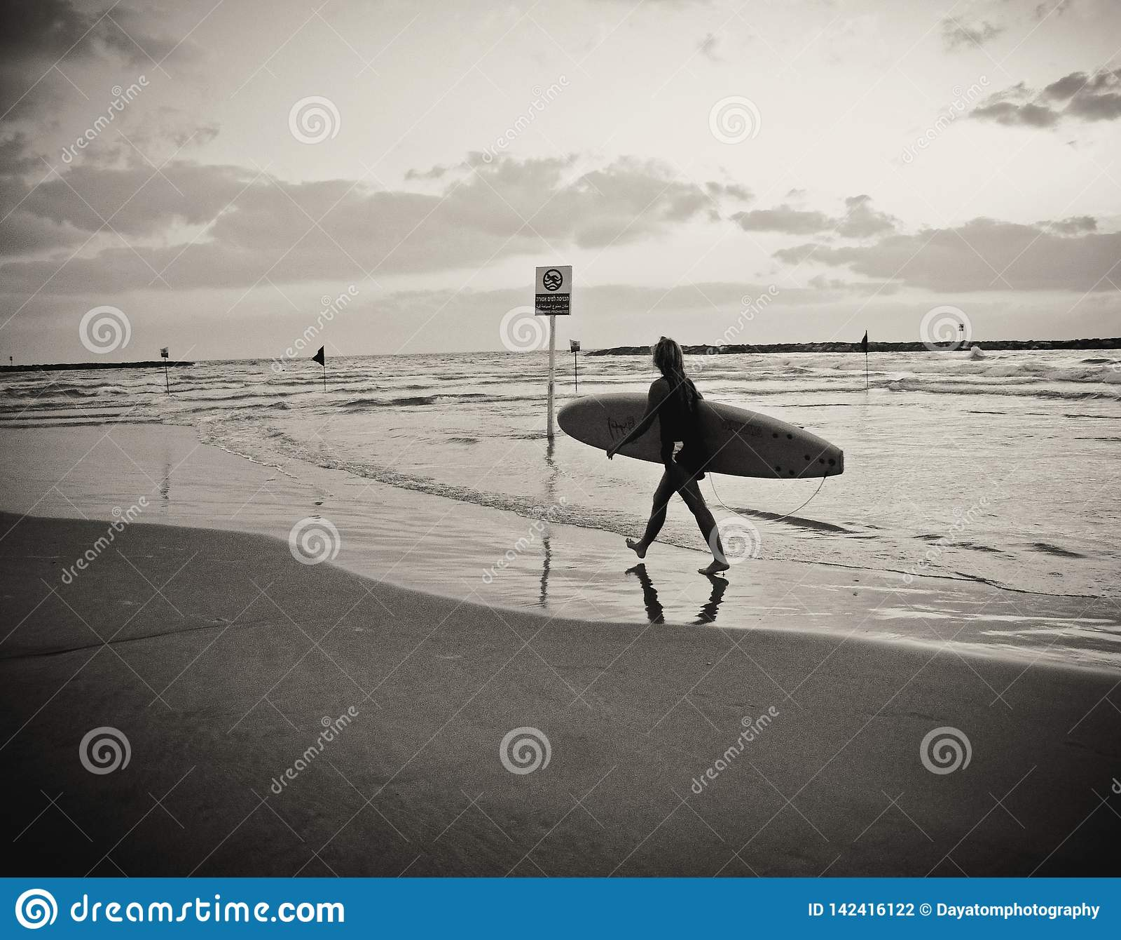 Surfista fêmea novo com a placa que anda na praia, refletida na água, sob um céu nebuloso
