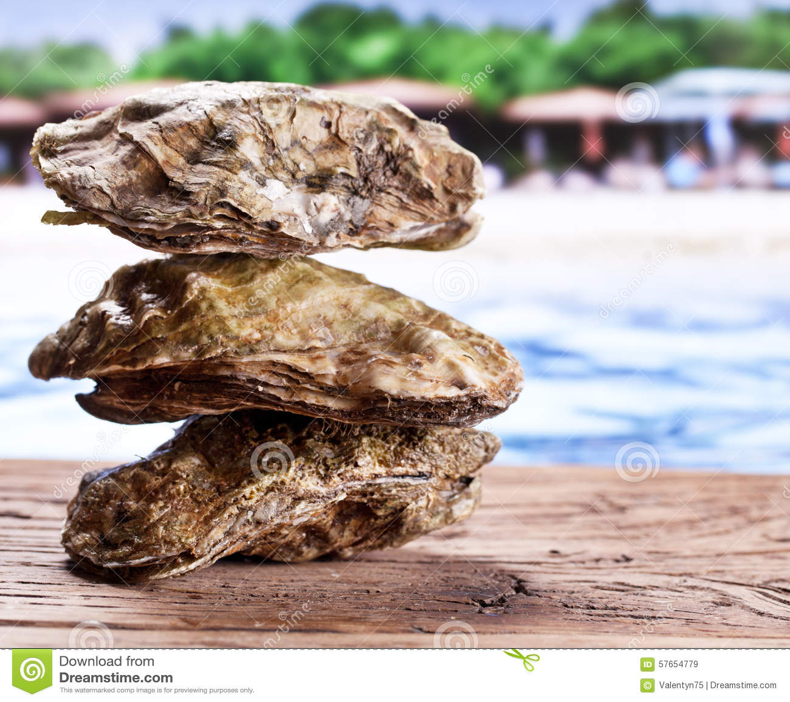 Surowa ostryga na starym drewnianym stole