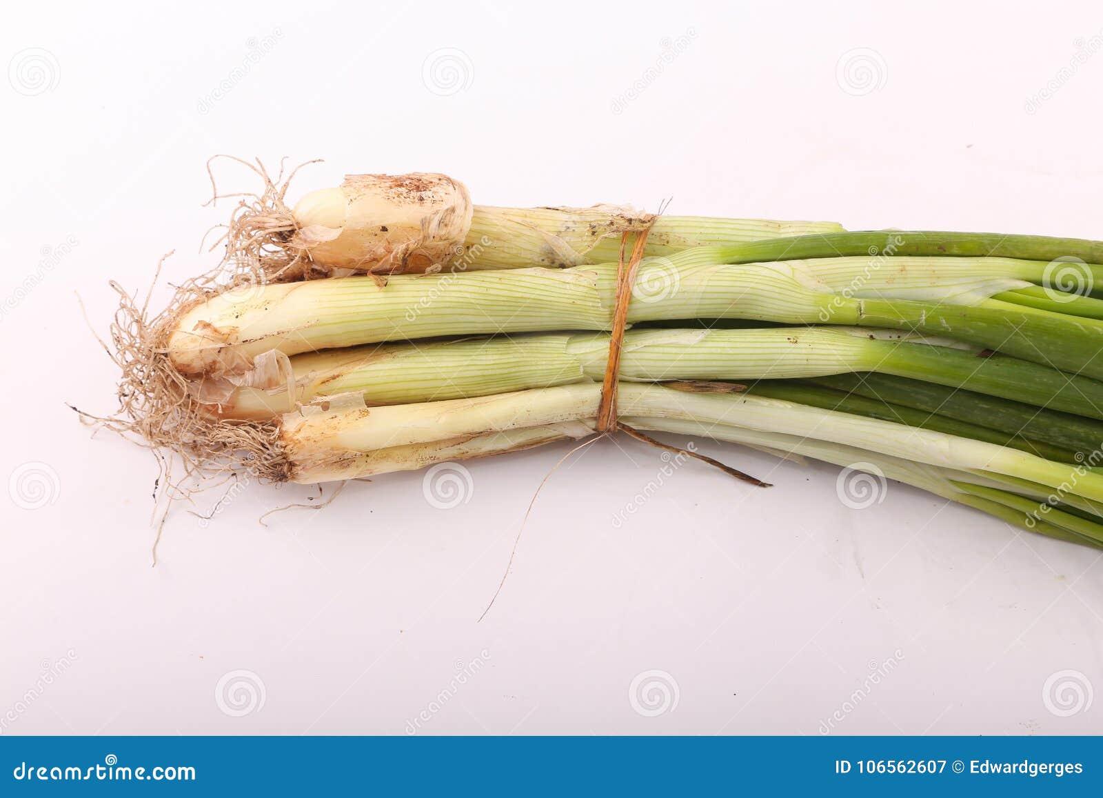 Surowa zielona cebula