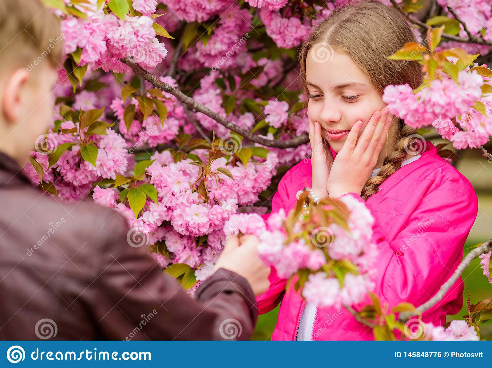 Surprising her. Romantic teens. Kids enjoying pink cherry blossom. Tender bloom. Couple kids on flowers of sakura tree