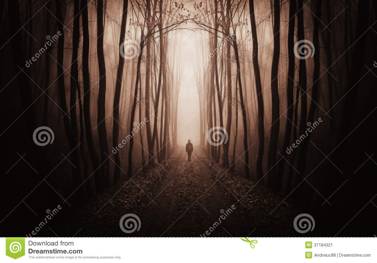 Surreal dark forest with man walking in fog