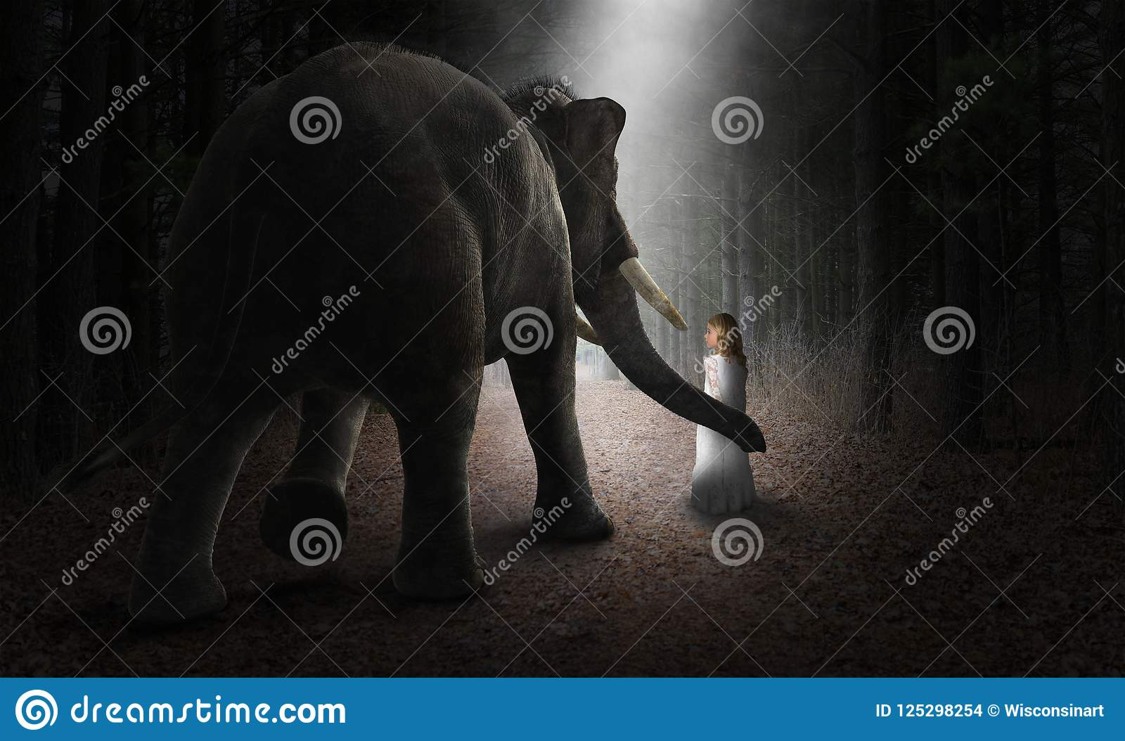 Surreal Elephant, Girl, Friends, Love, Nature