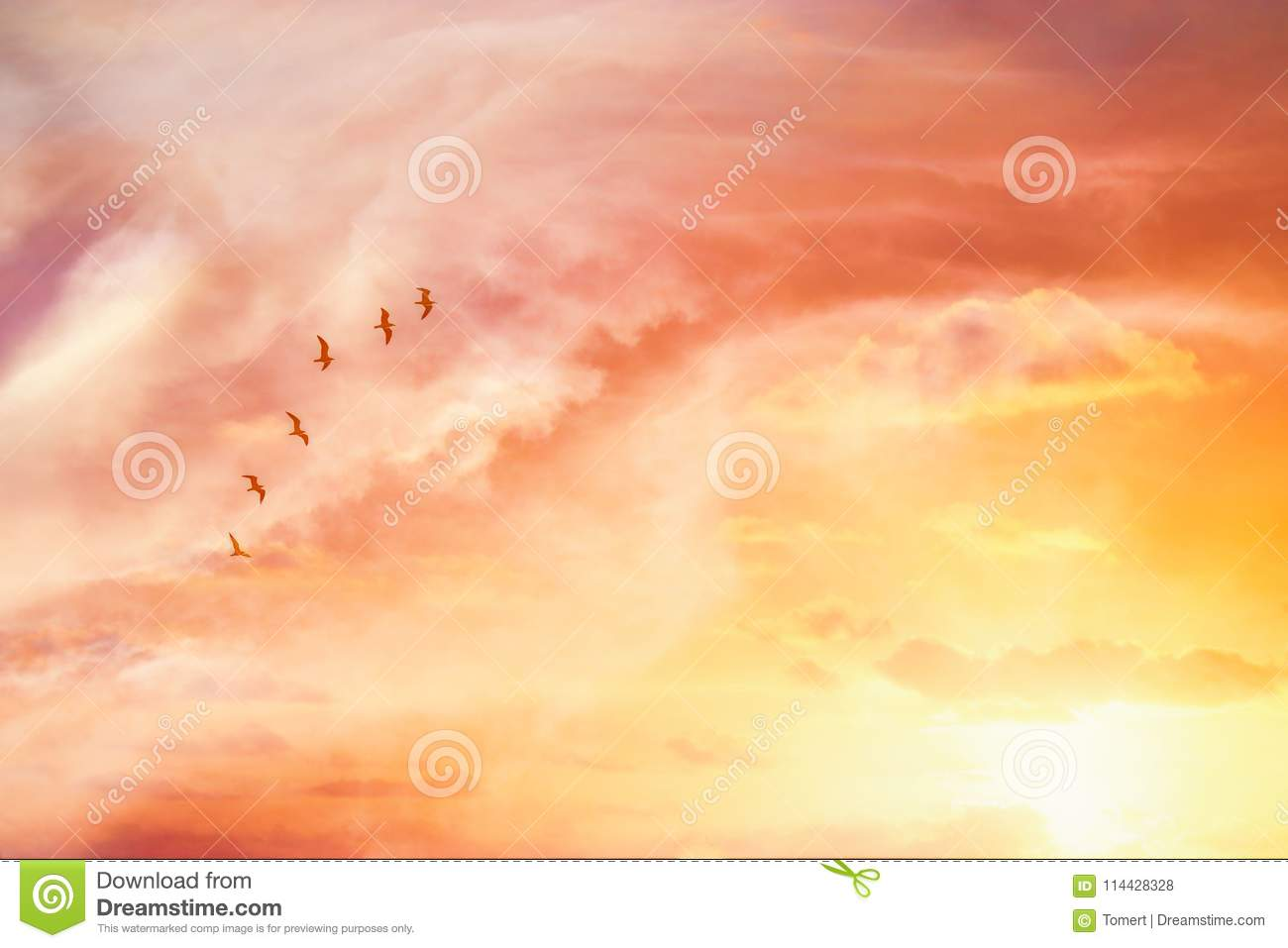 surreal enigmatic picture of flying birds in sunset or sunrise sky . minimalism and dream concept.