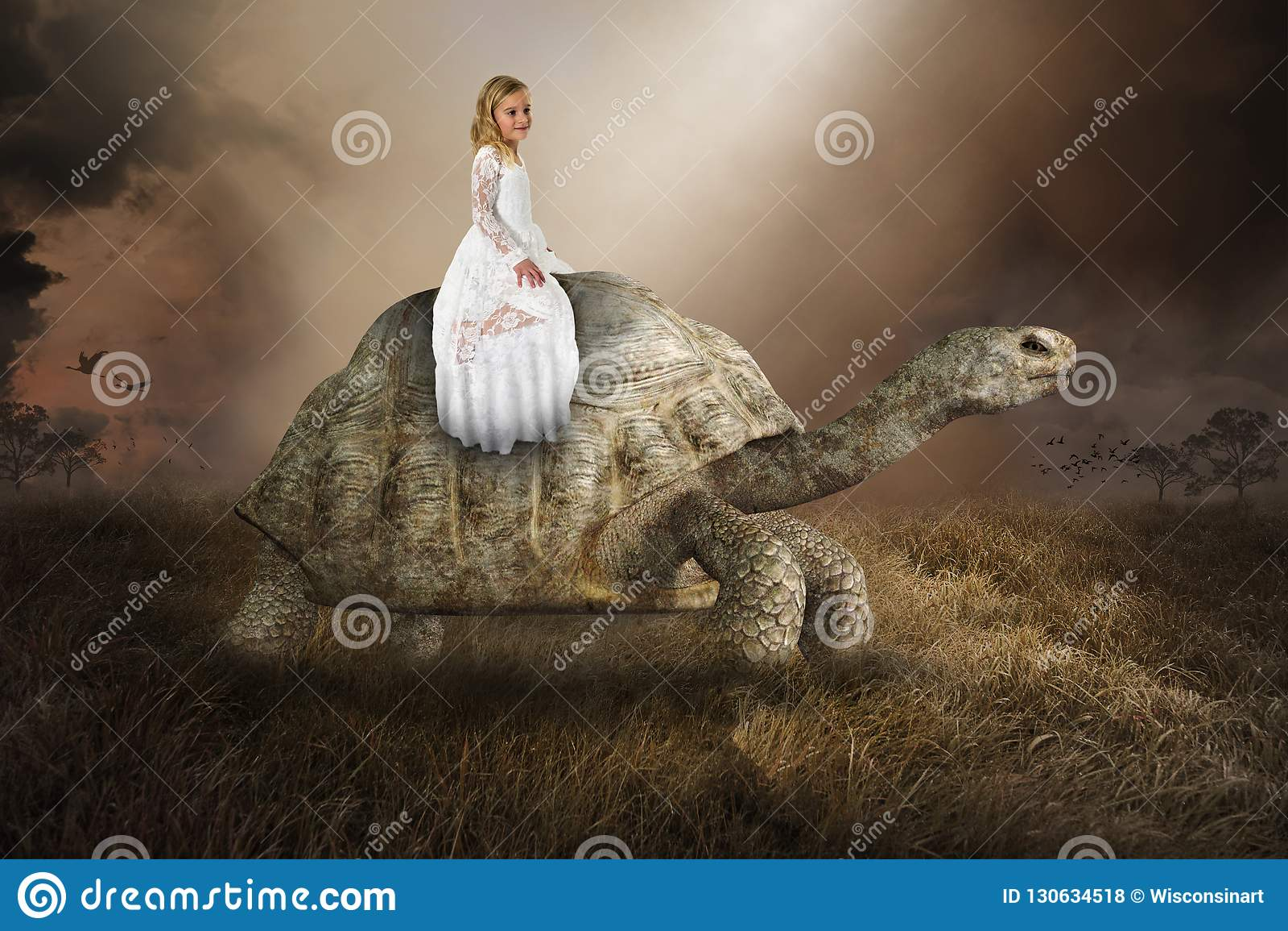 Surreal Girl, Turtle, Tortoise, Nature, Peace, Love