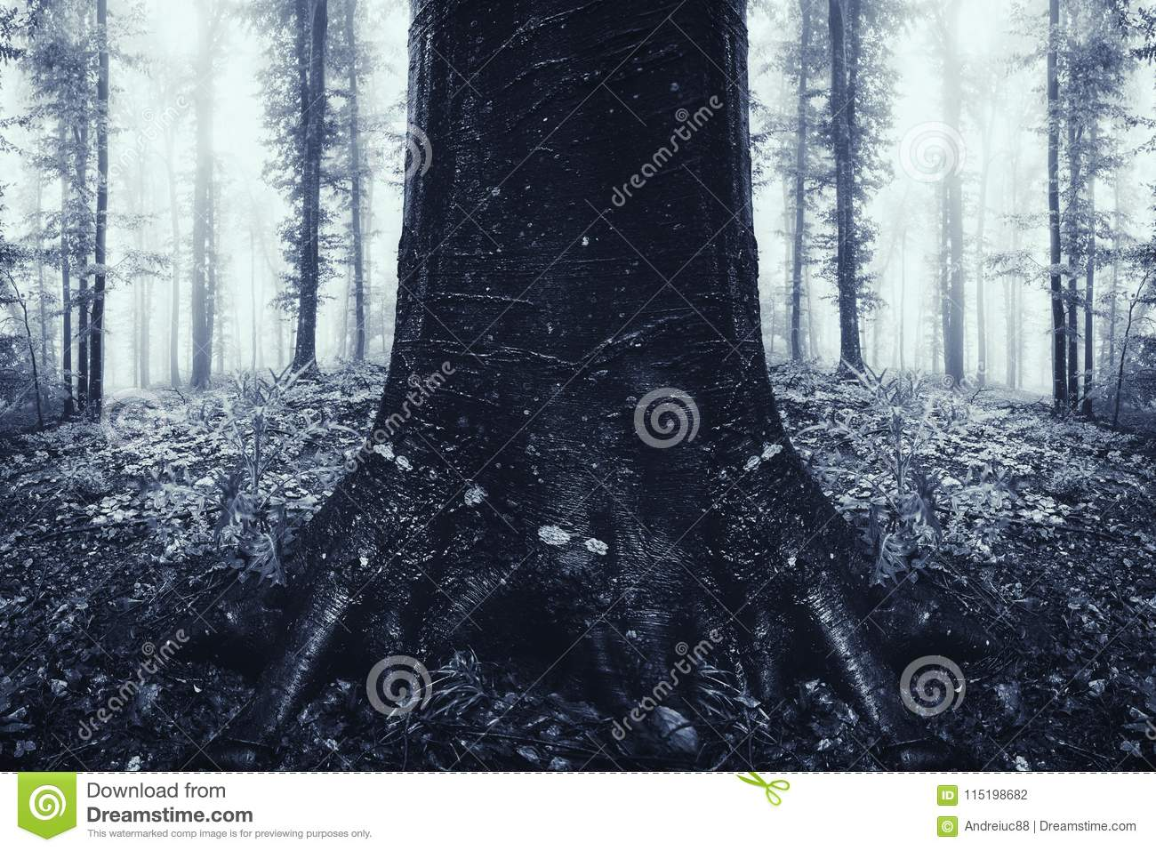 surreal haunted forest with old tree symmetrical mysterious forest with fog haunted halloween woods with surreal symmetrical tree