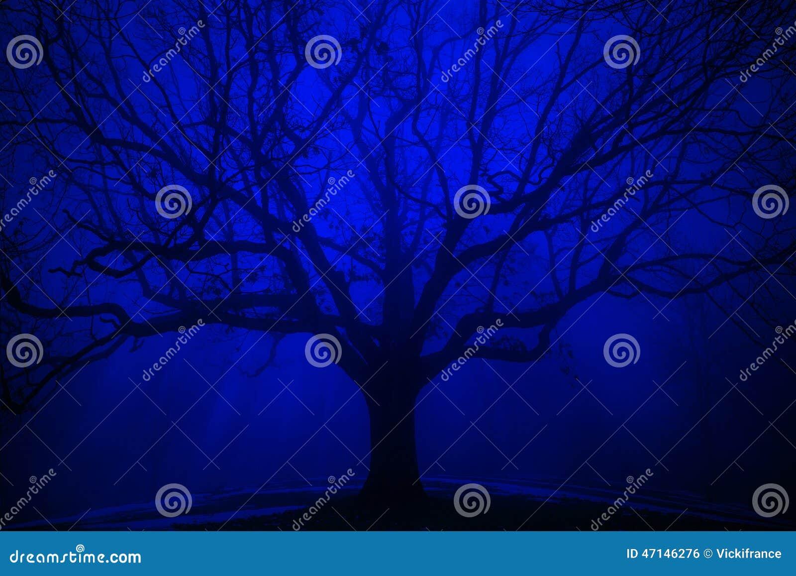 Surrealistyczny drzewo w zimy błękita mgle