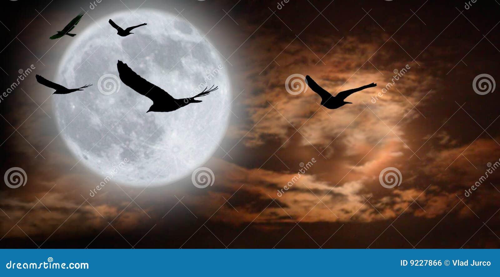 Surrealistyczny ptaka moonscape