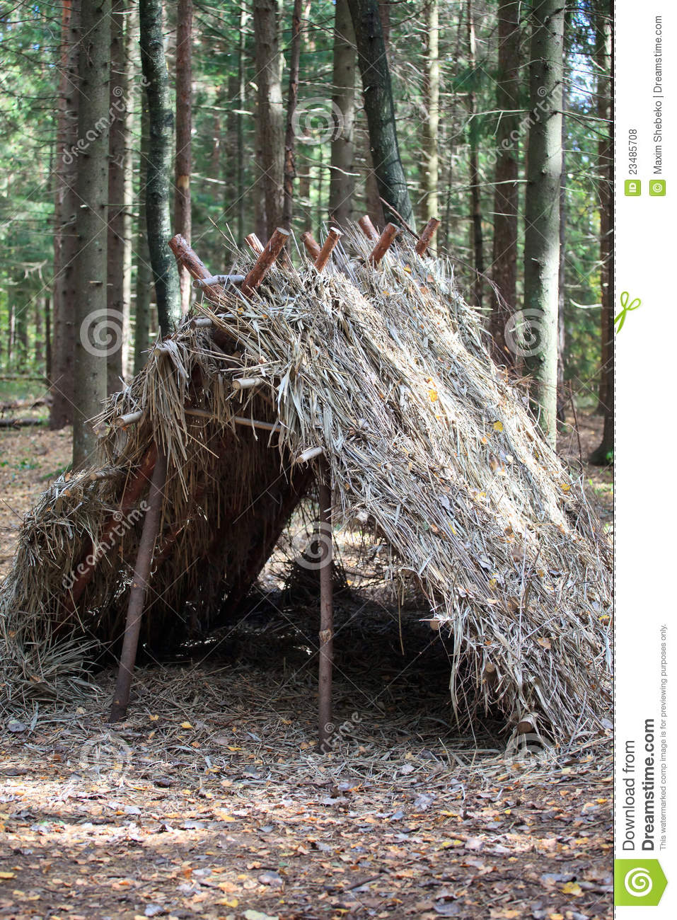 Survival Shelter stock photo. Image of hiking, branches ...