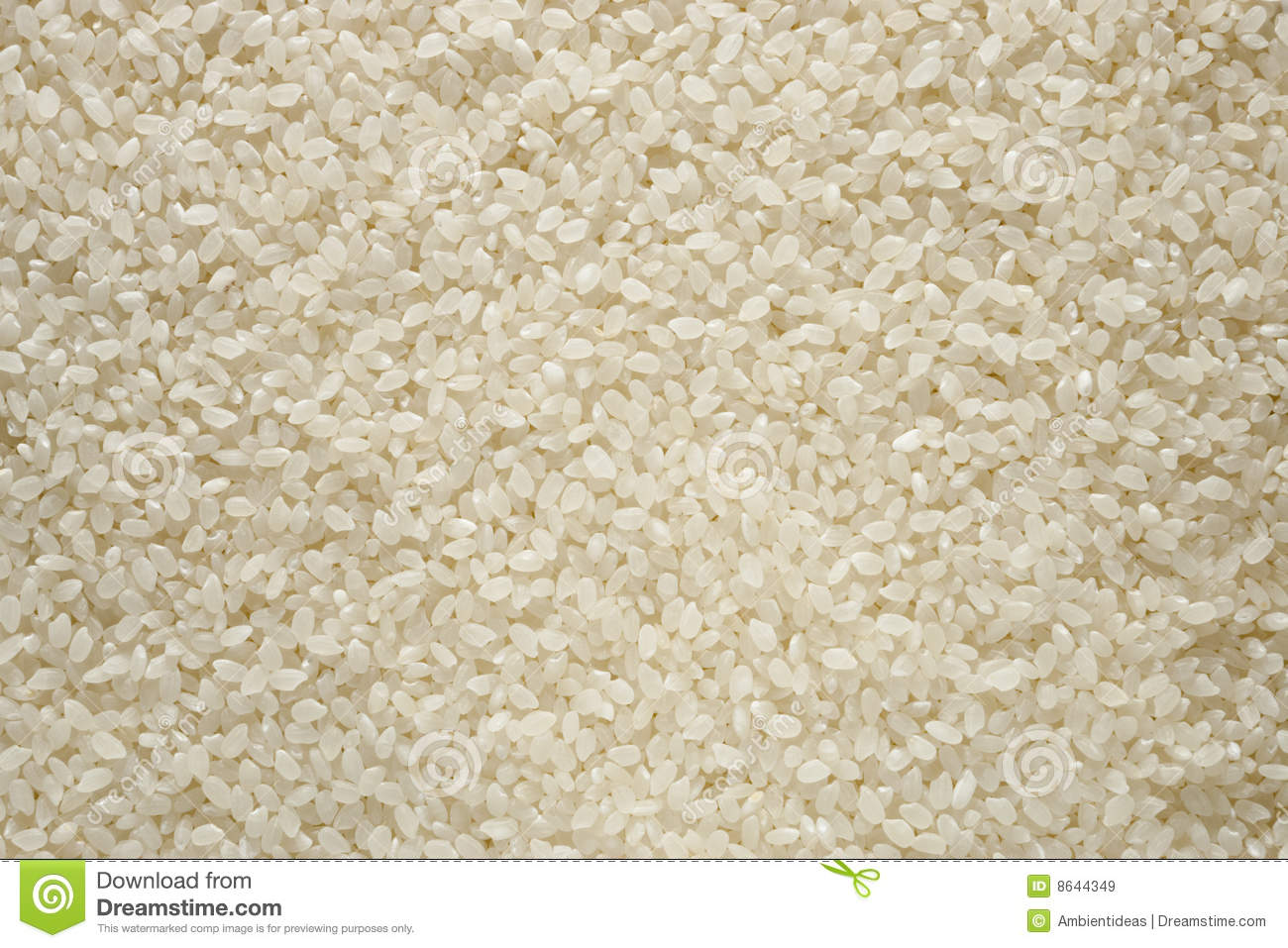 Sushi Rice Royalty Free Stock Images - Image: 8644349
