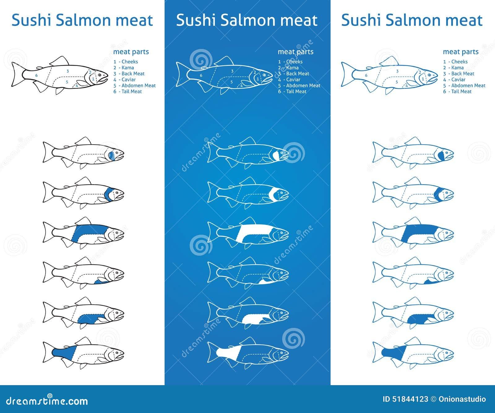 Salmon Cut Diagram - Free Vehicle Wiring Diagrams •