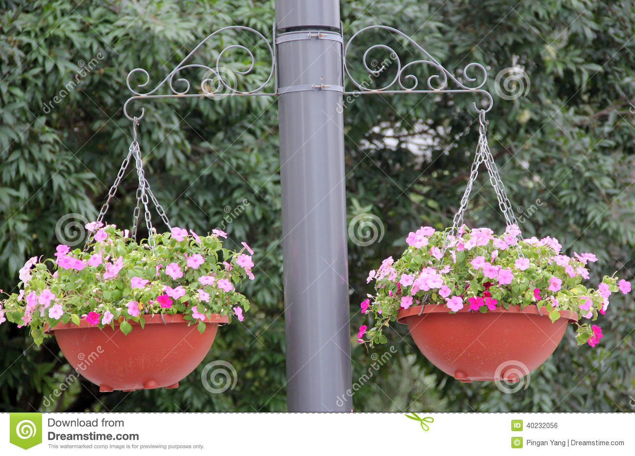 Suspension de pot de fleur photo stock image 40232056 - Suspension pot de fleur macrame ...