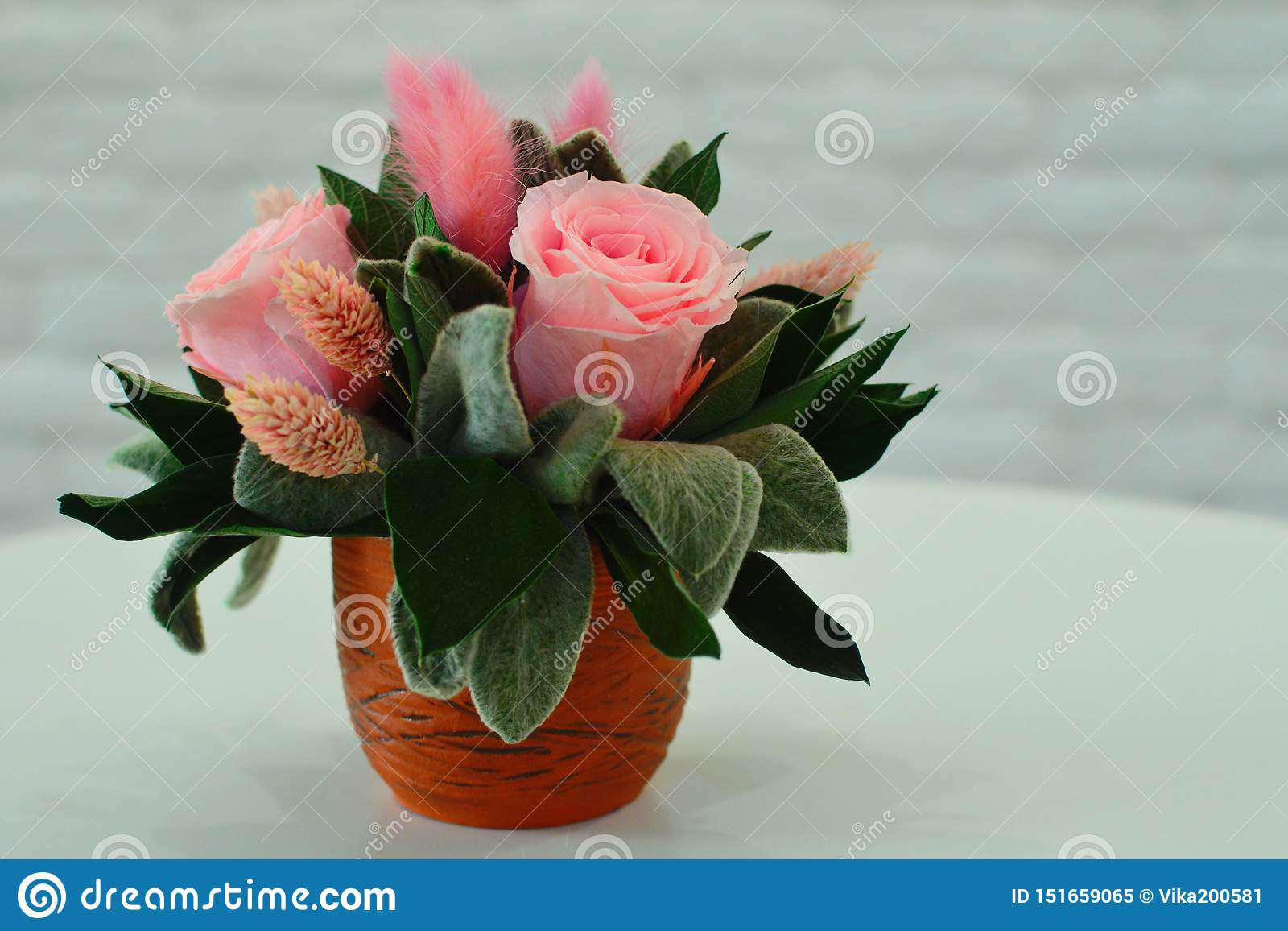 Suszy kwiaty dla wewnętrznego wystroju
