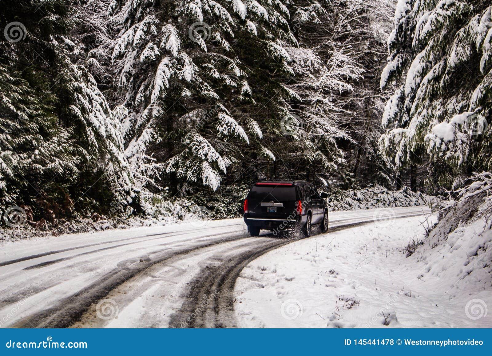 SUV-het Drijven in de Sneeuwbergen
