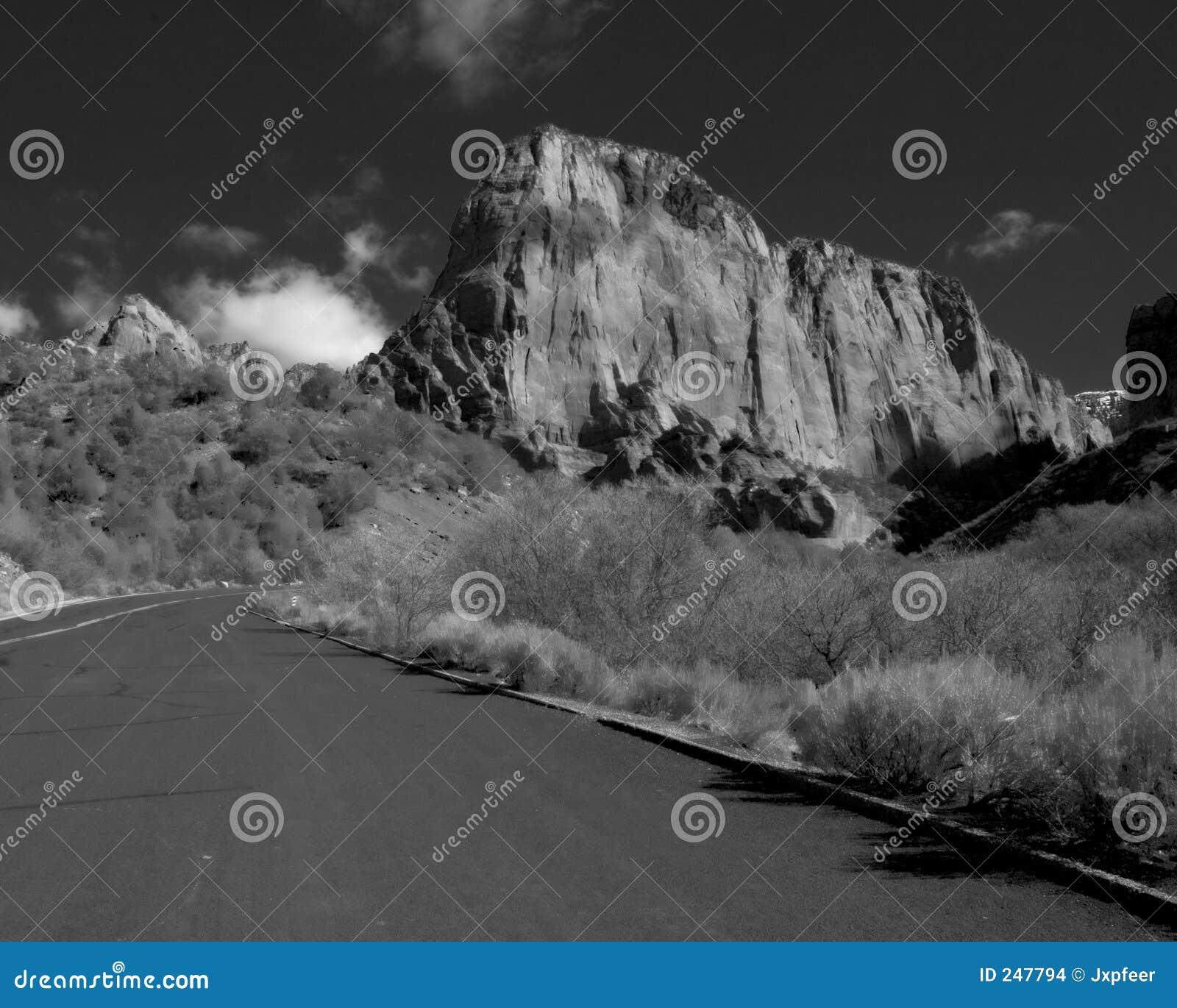 Svart Canyon Road white