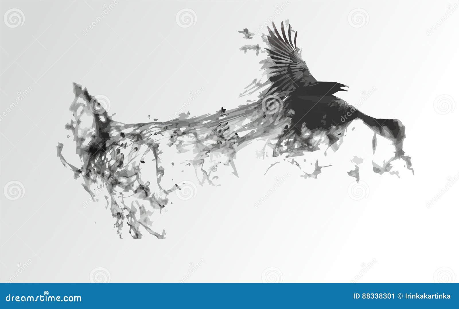 Svart fågel på en vit bakgrund