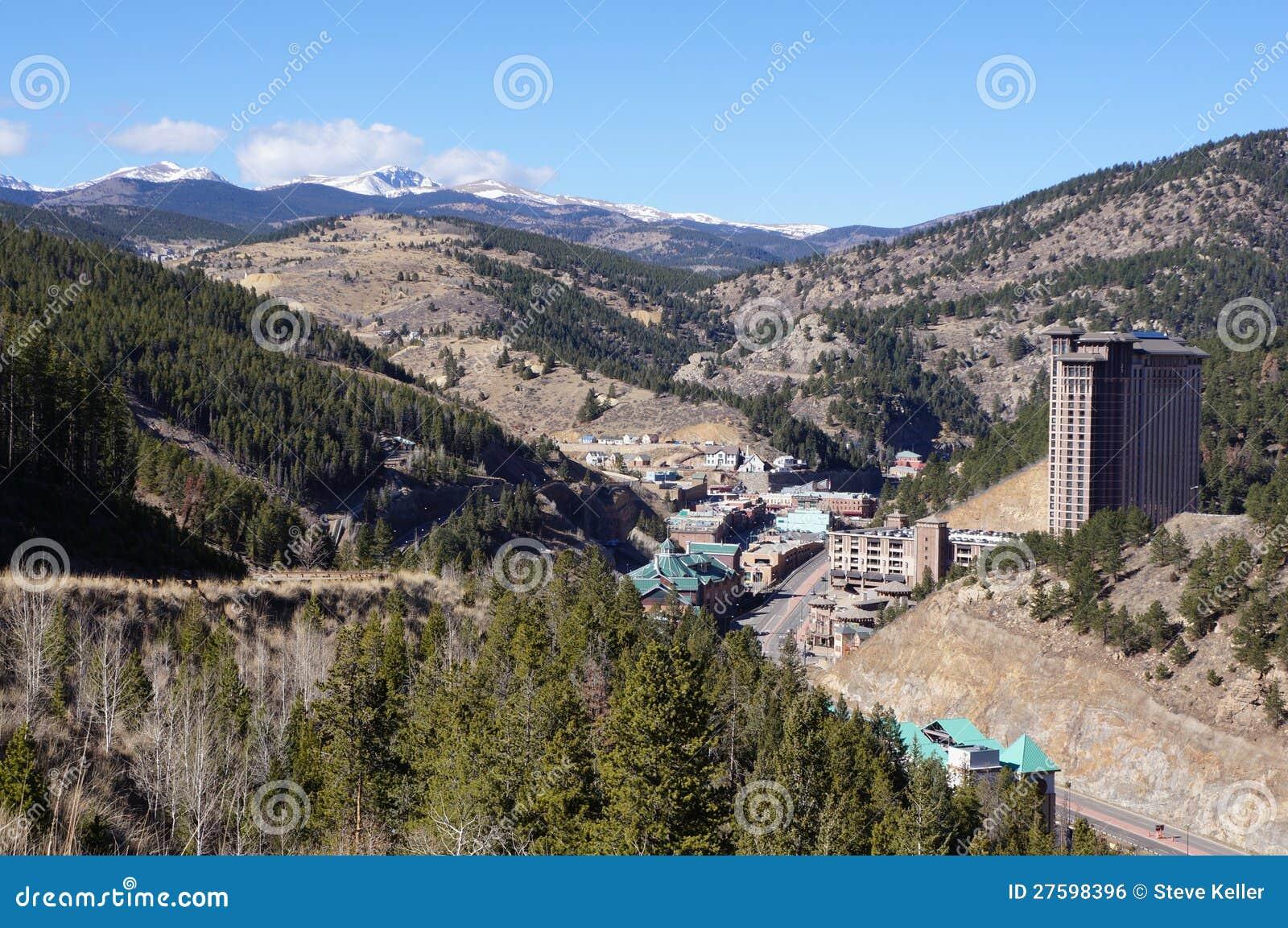 Svart hök Colorado