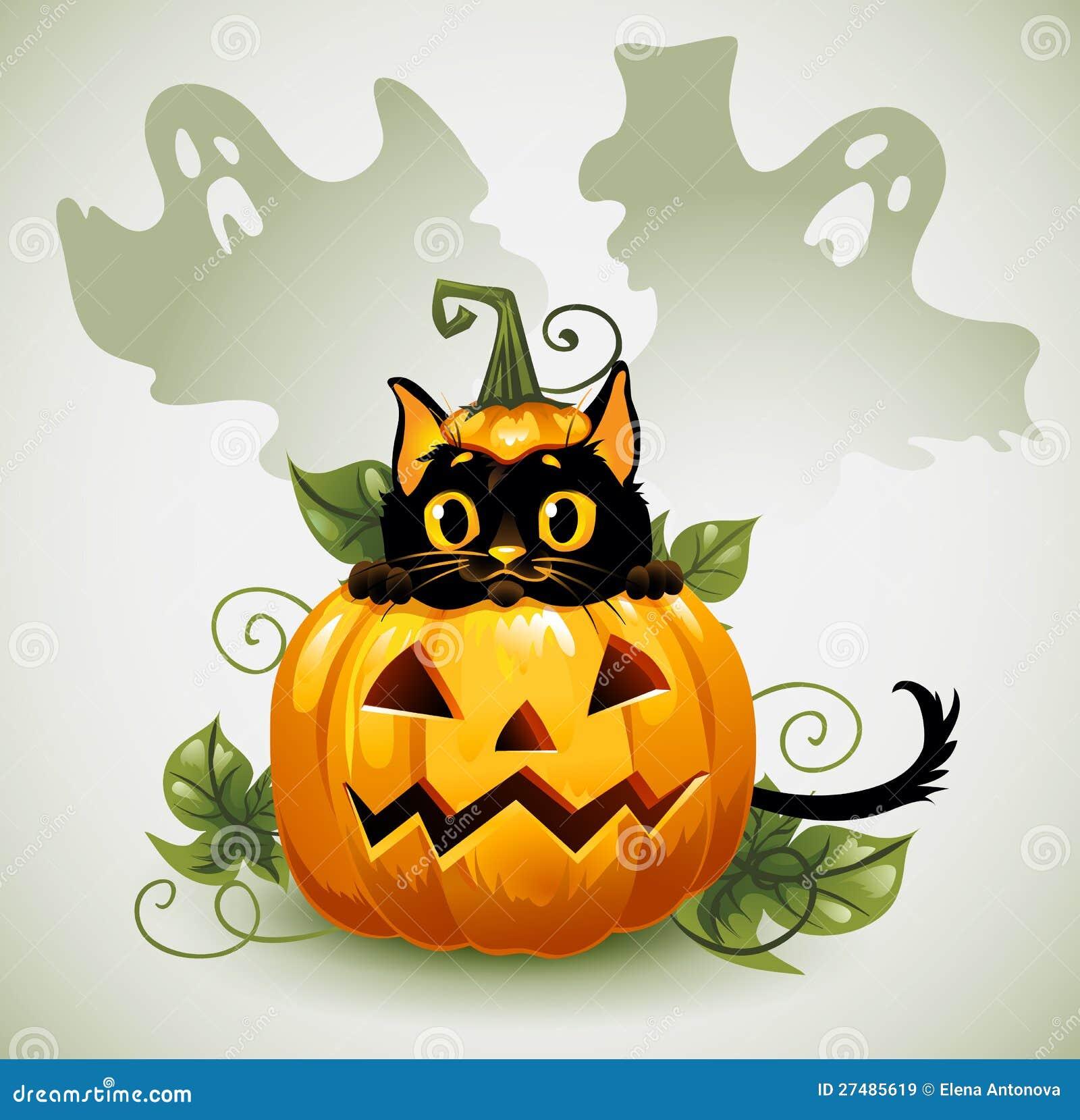 Svart katt i en halloween pumpa och sp ke vektor illustrationer illustration av kattunge - Halloween fensterbilder ...