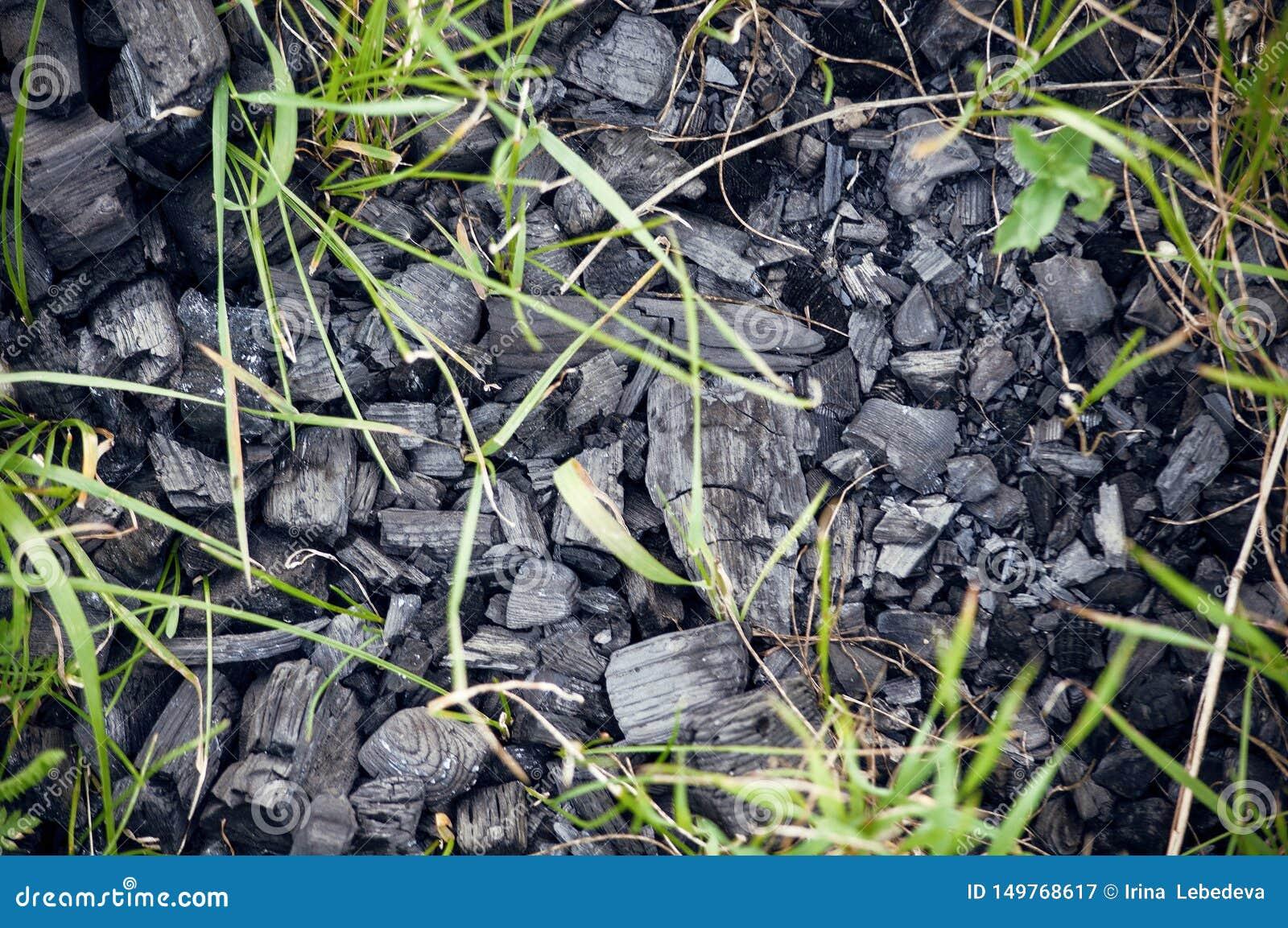 Svart kol som lämnas länge på jord