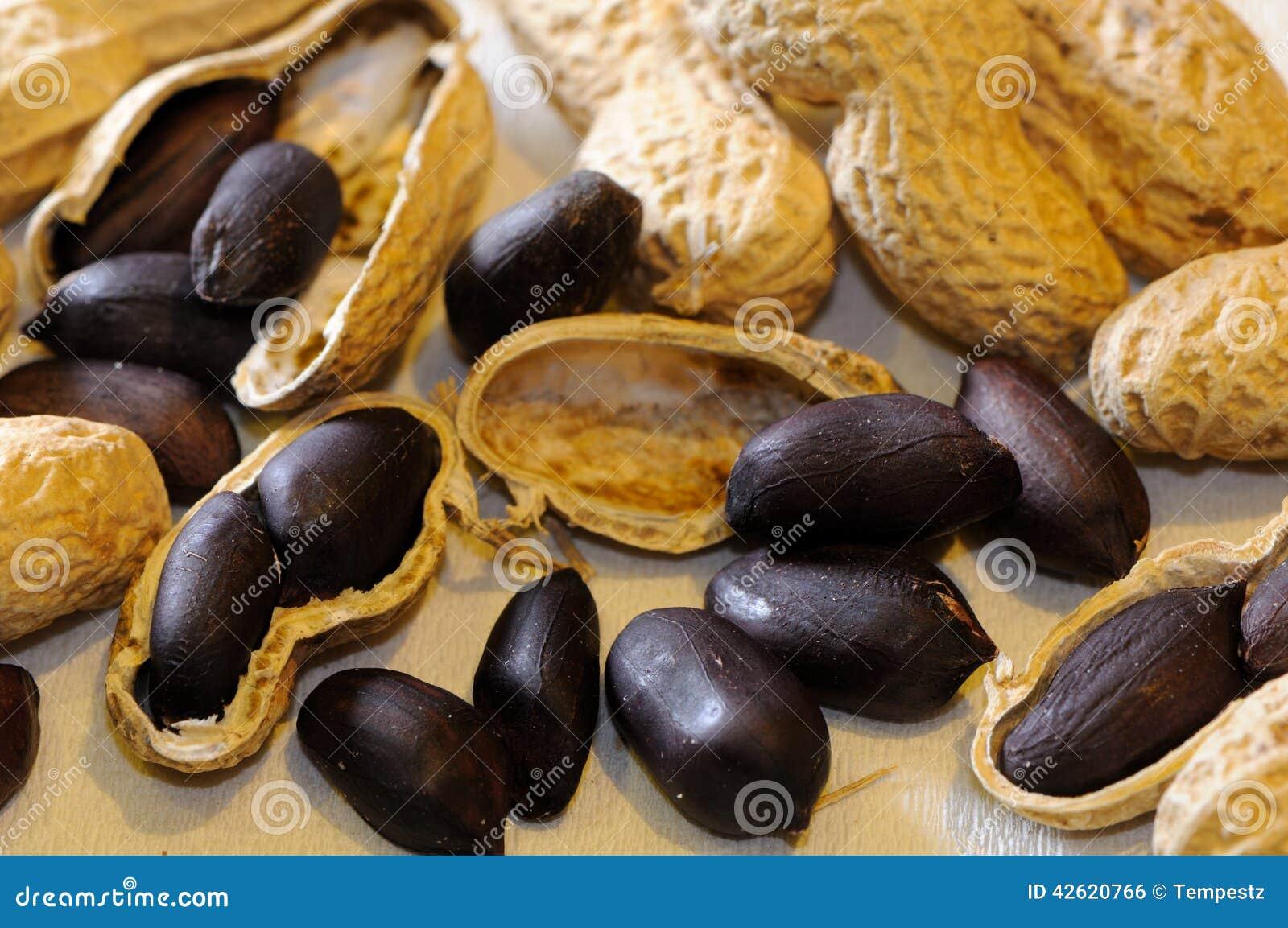 jordnötter protein