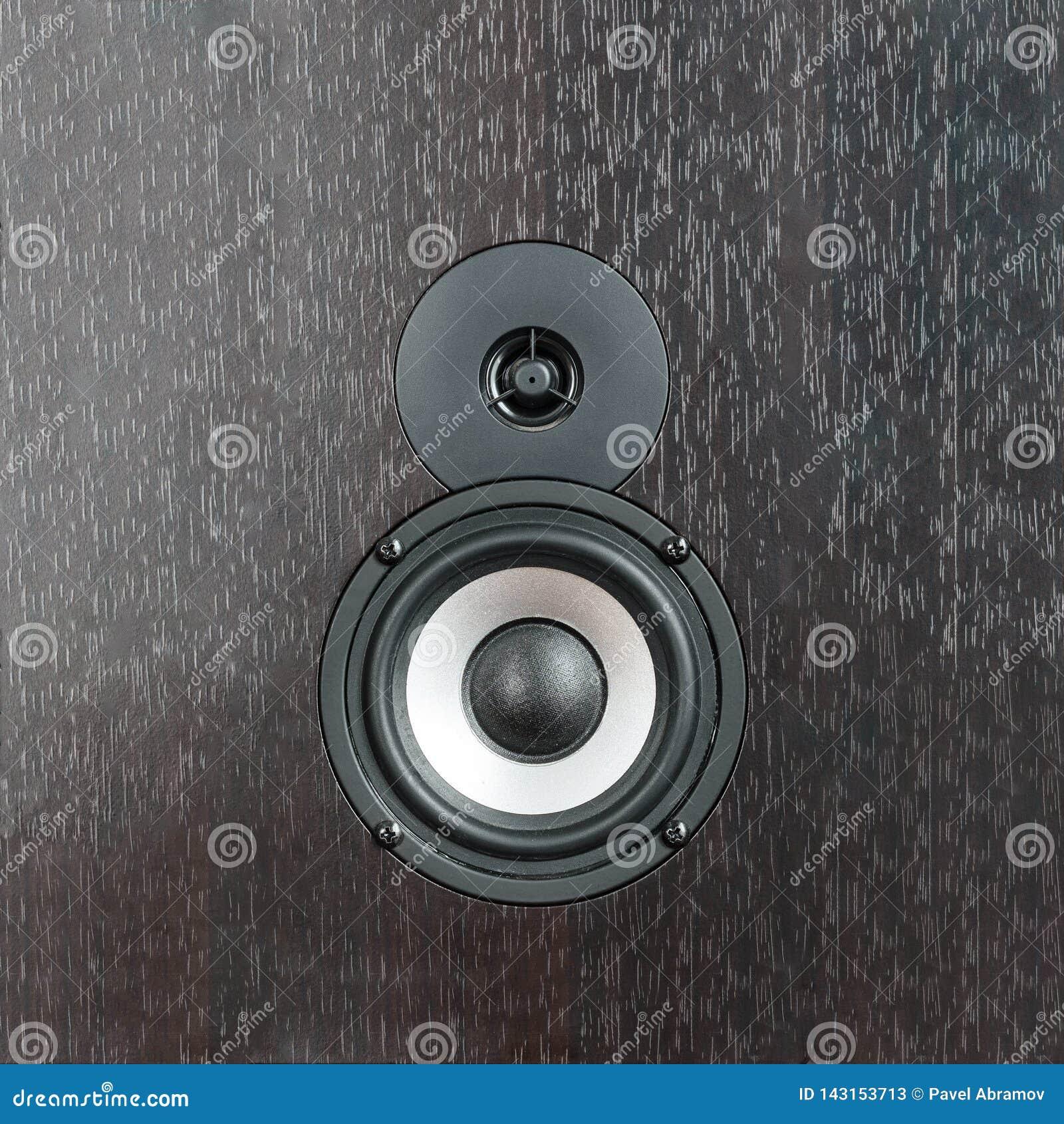 Svartvit högtalare på mörk träbakgrund