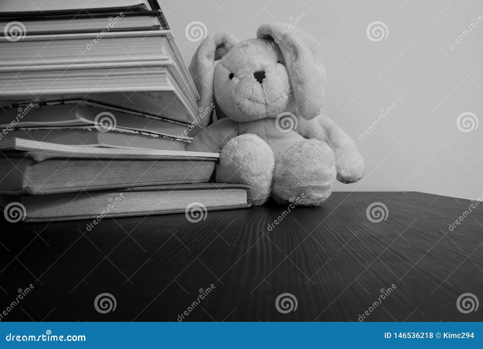 Svartvitt foto av en flott leksak för kanin som sitter i bakgrunden av staplade böcker