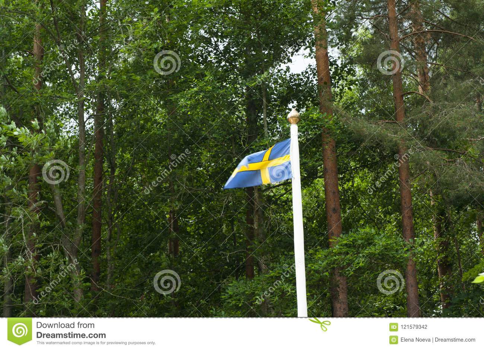 Svenskflagga på grön skogbakgrund