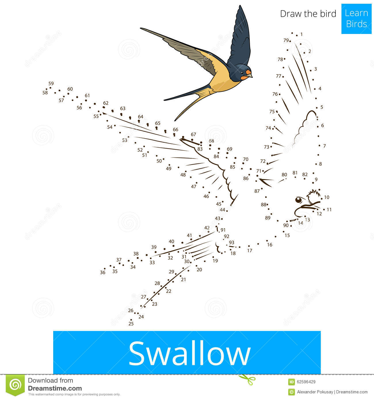Learning to Swallow - The Stroke Network