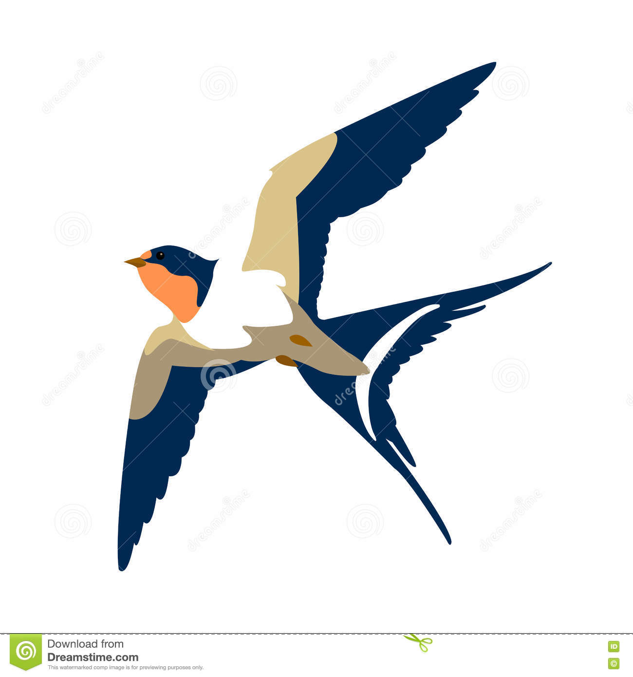 swallow vector vector illustration
