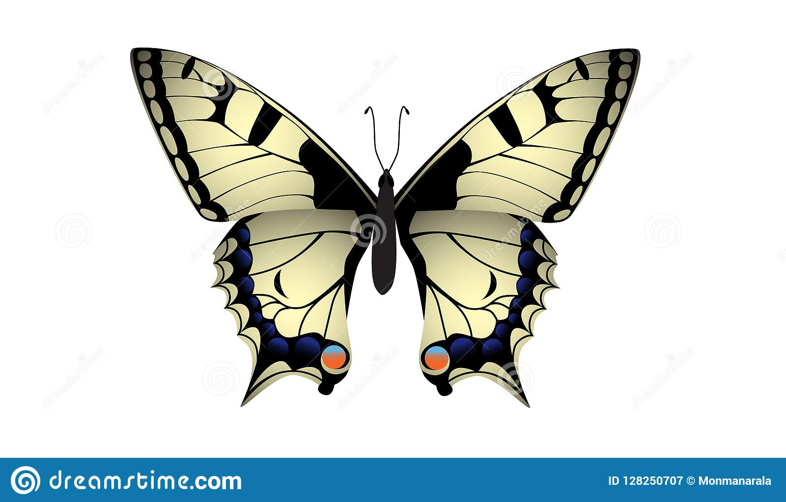 Swallowtail motyla wektor