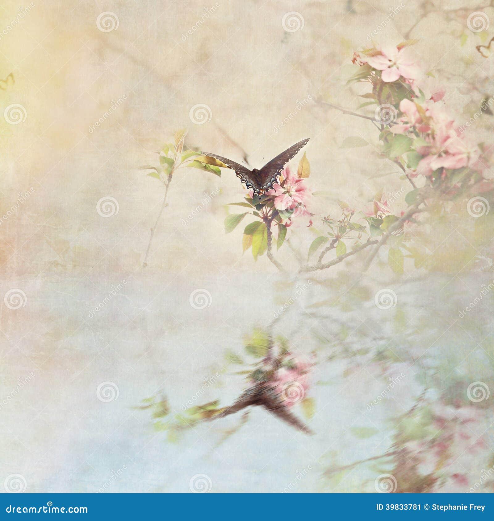 Swallowtail sobre a água