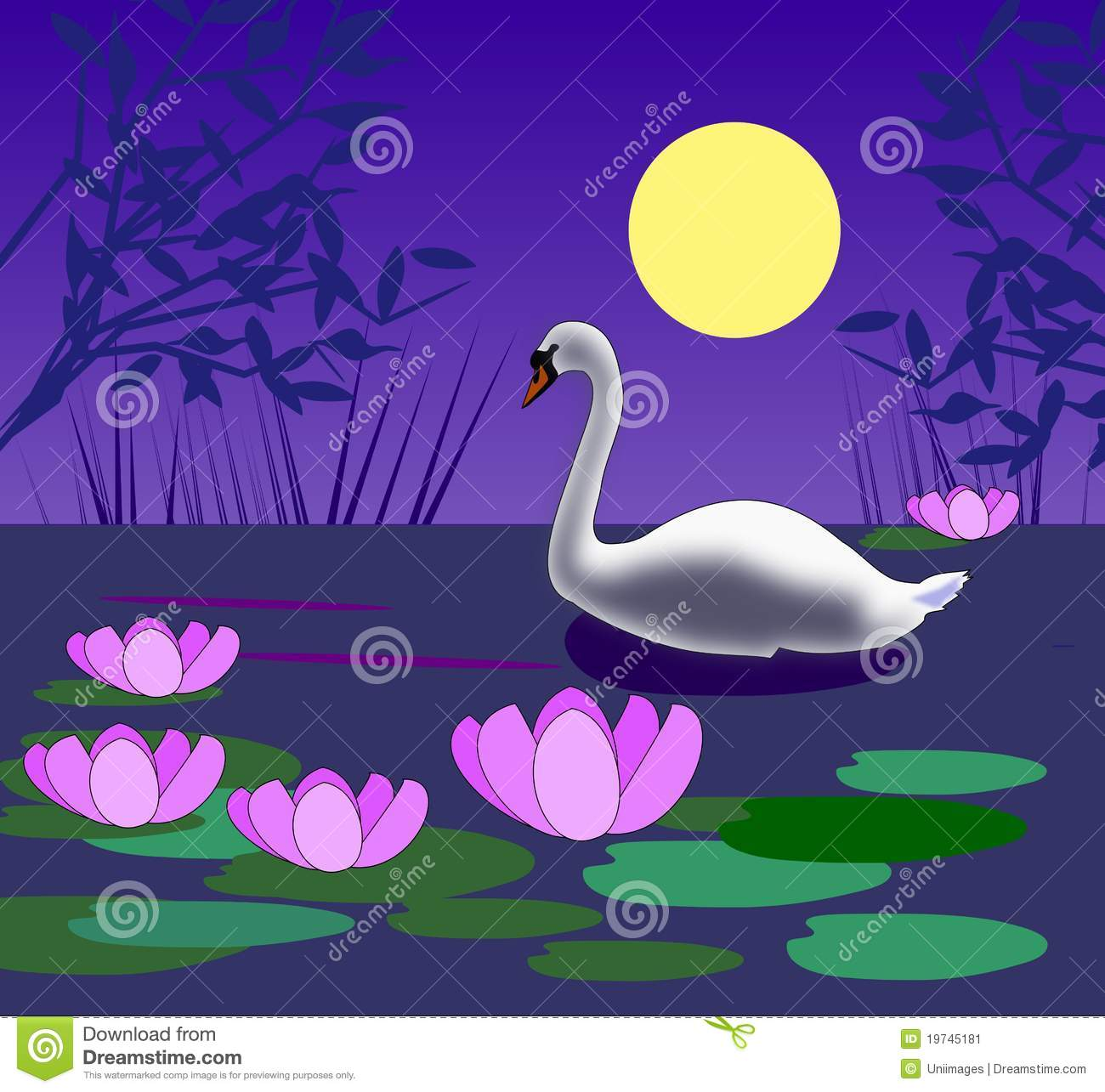swan in the moonlight stock illustration image of amusing