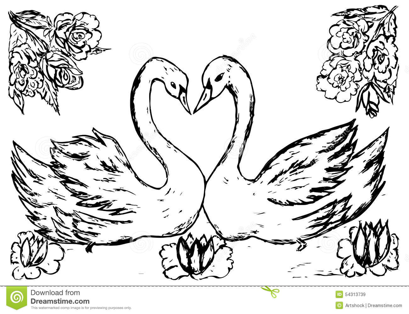 Swans In The Pond Sketch Stock Vector Image 54313739