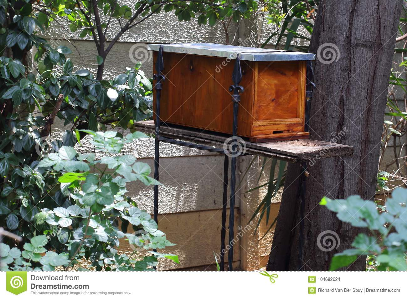 Swarm trap for honey bees