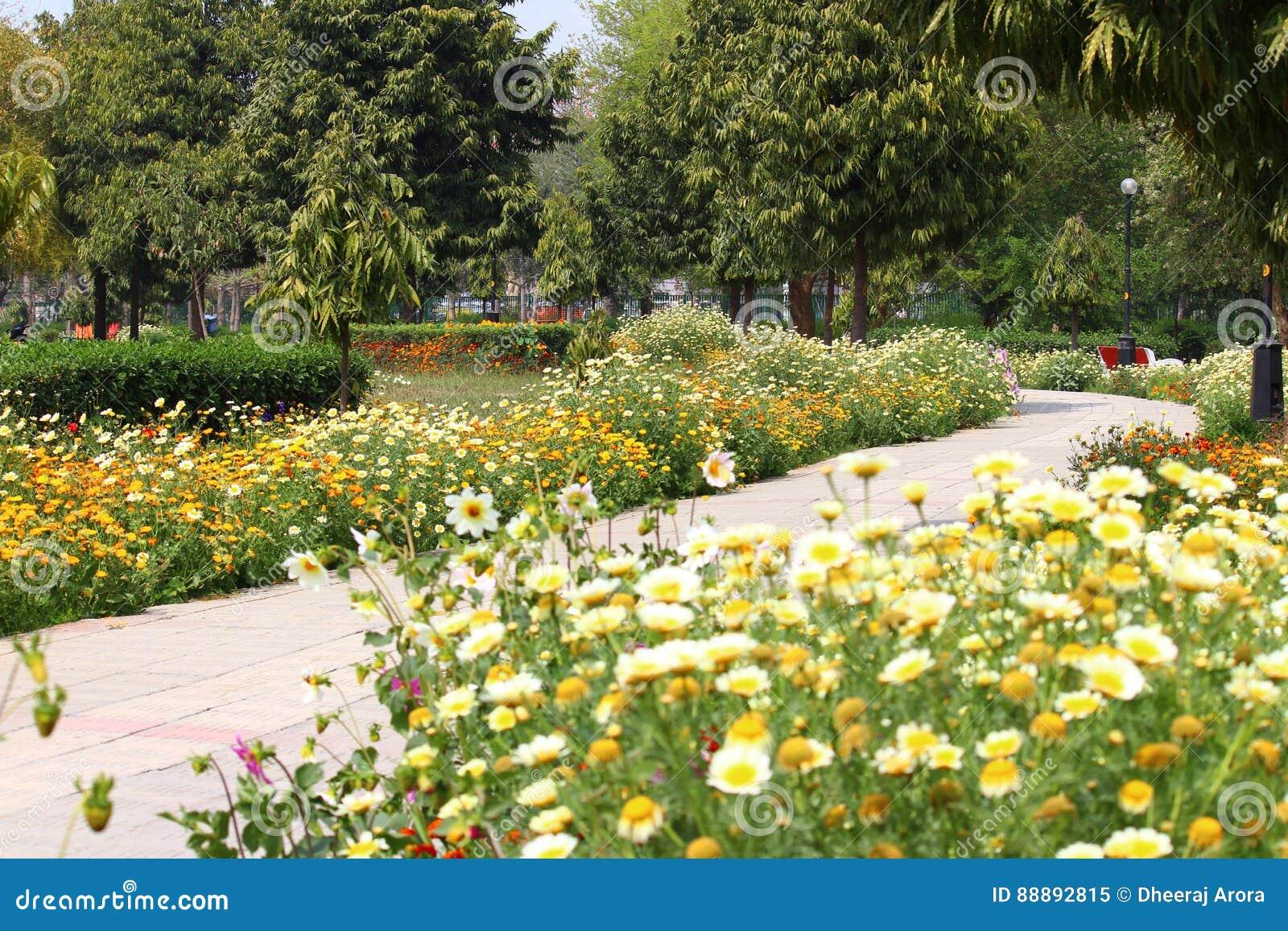 Swarn Jayanti Park Rohini New Delhi India Stock Image Image Of
