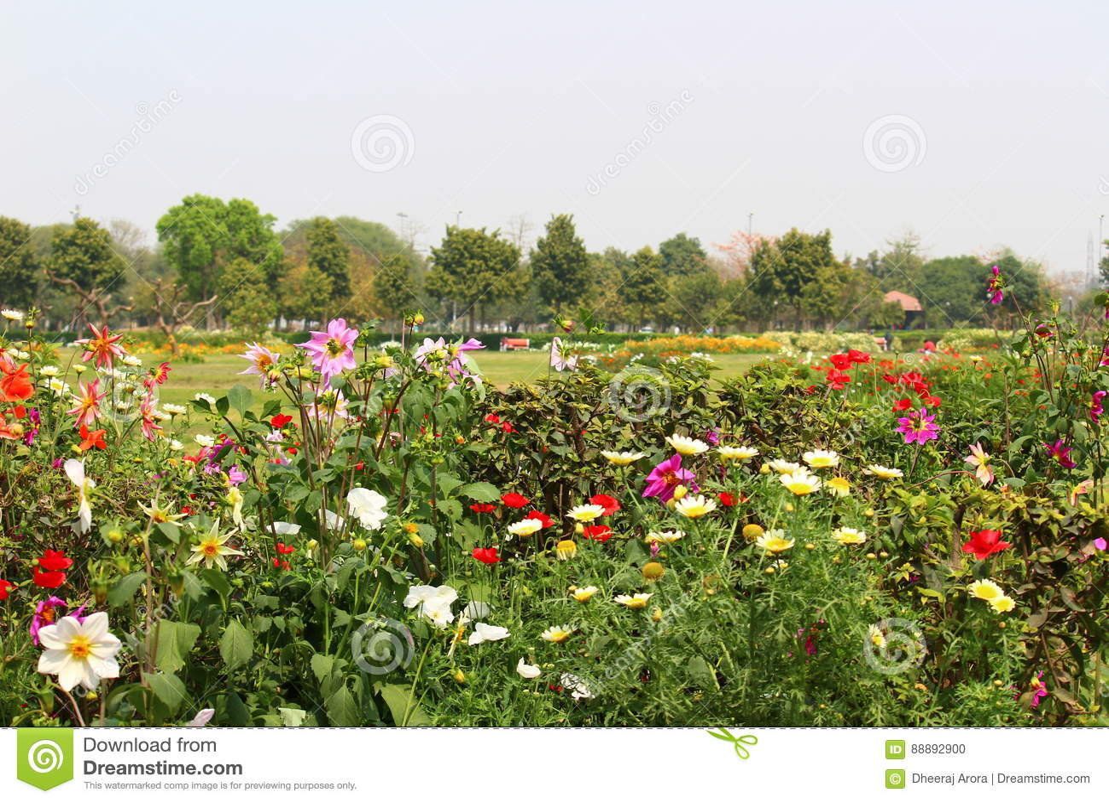 Swarn Jayanti Park Rohini New Delhi India Stock Photo Image Of