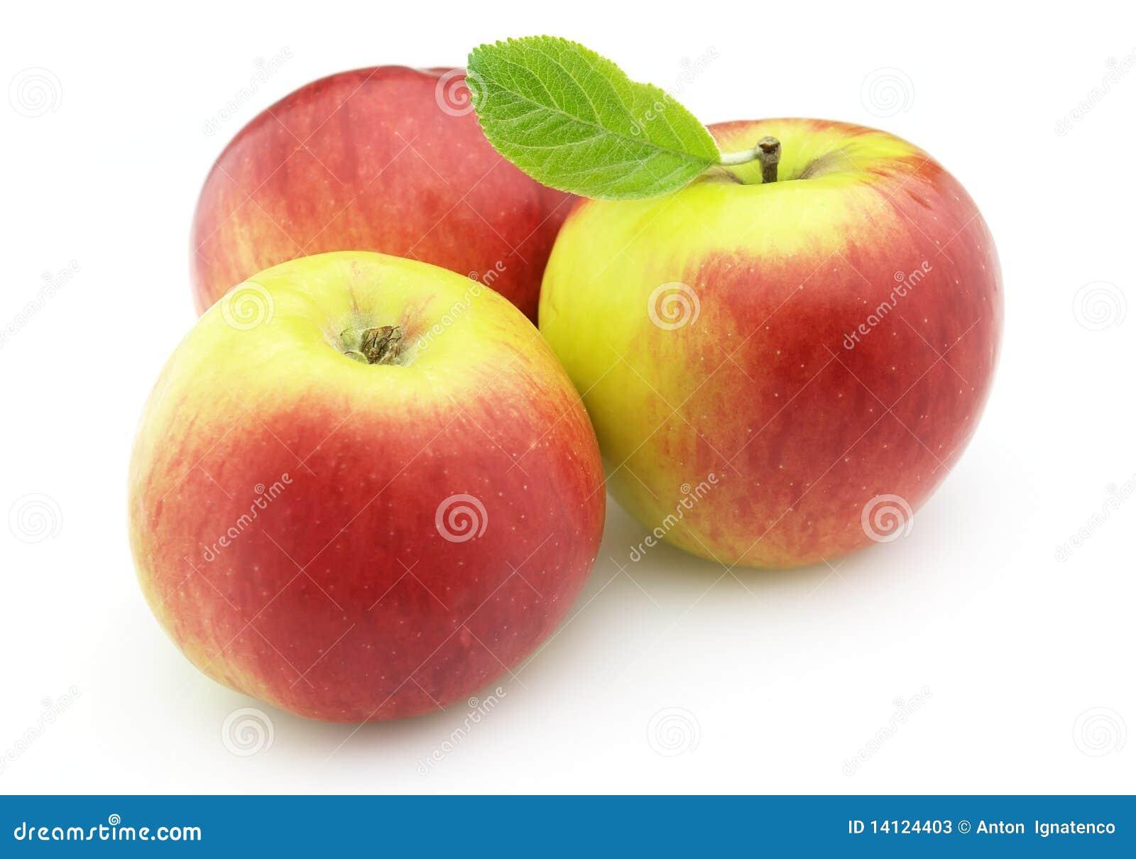Sweet apples stock image. Image of object, bright, medium ...