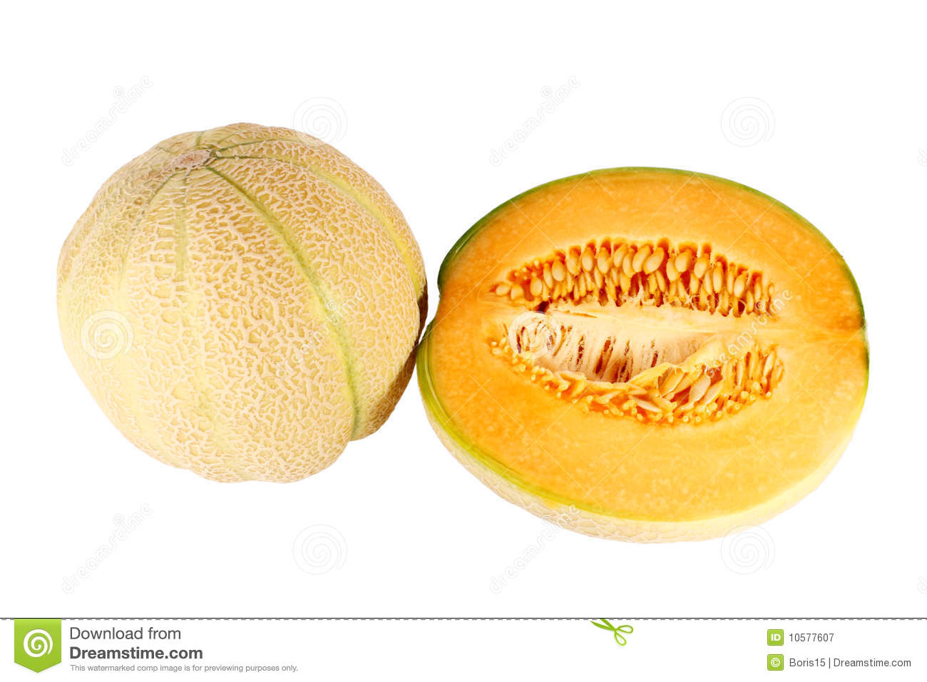Sweet Baby Melon Stock Image Image Of Nature Refreshing 10577607 Grab incredible cantaloupe ball on alibaba.com at amazing offers and enjoy unending possibilities. dreamstime com