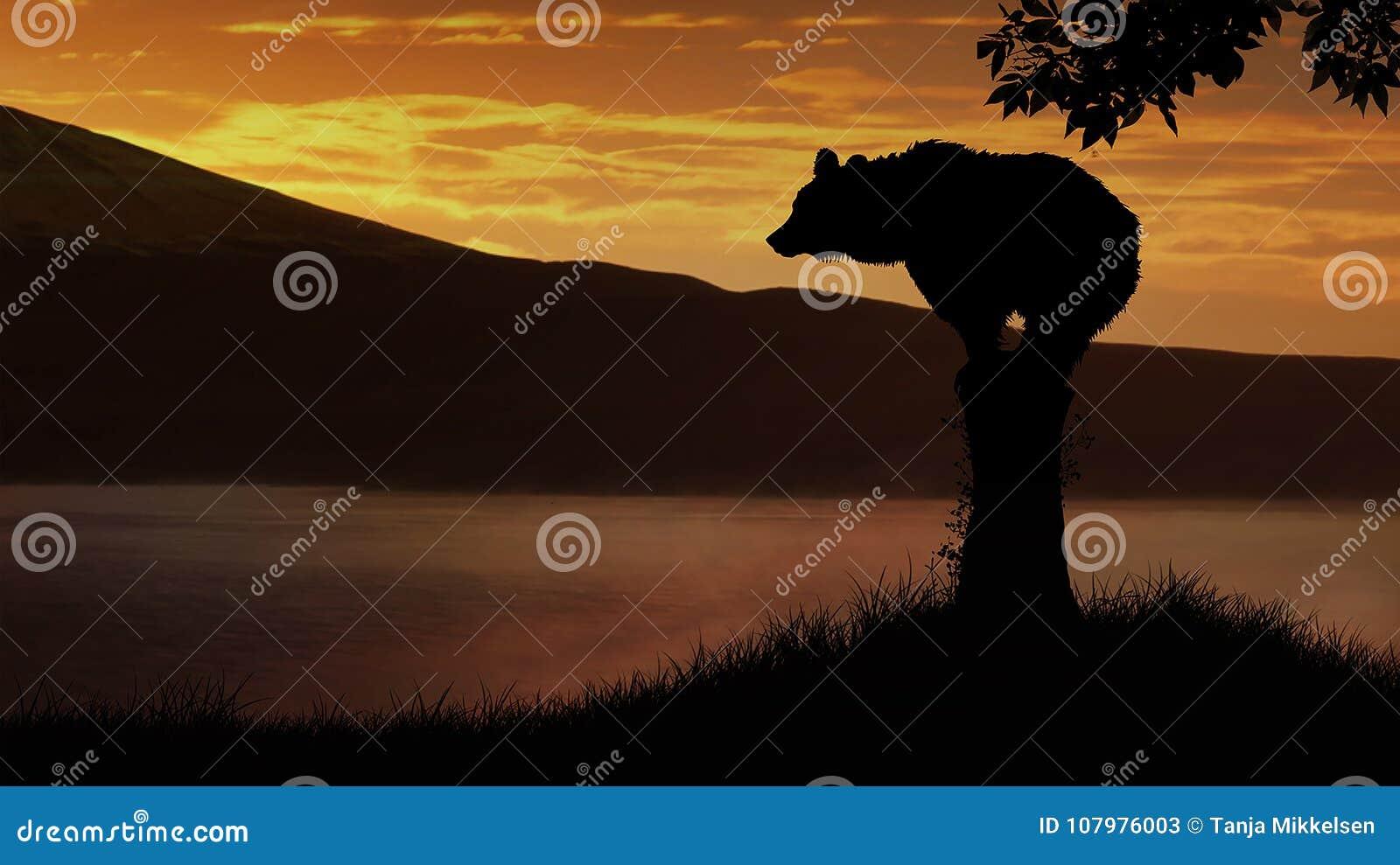Bear at sunset