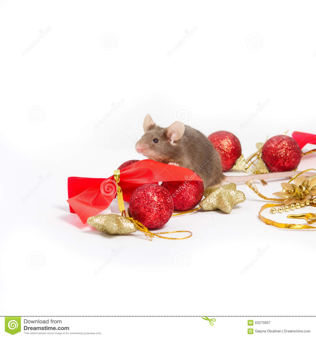 sweet brown mouse sitting among red and gold christmas decorations - Christmas Mouse Decorations