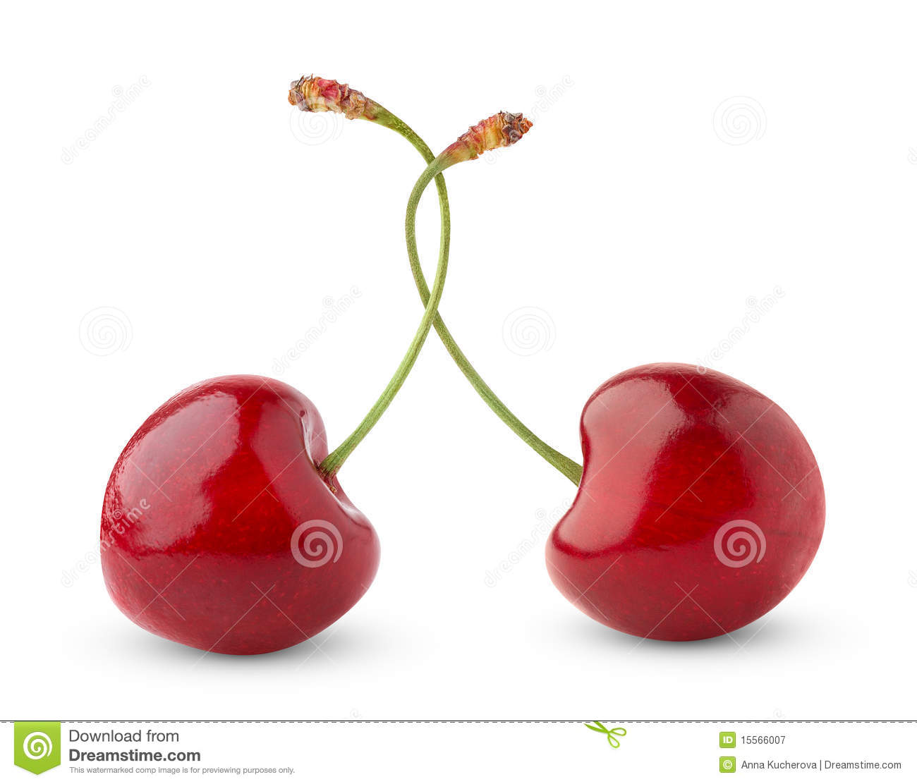 Red Sweet Cherry And Branch Of White Sweet Cherry On The ...