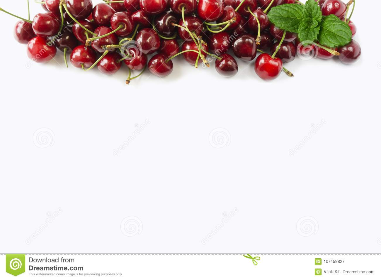 Sweet cherry berries on white background cutout. Cherry fruit at border of image with copy space for text.