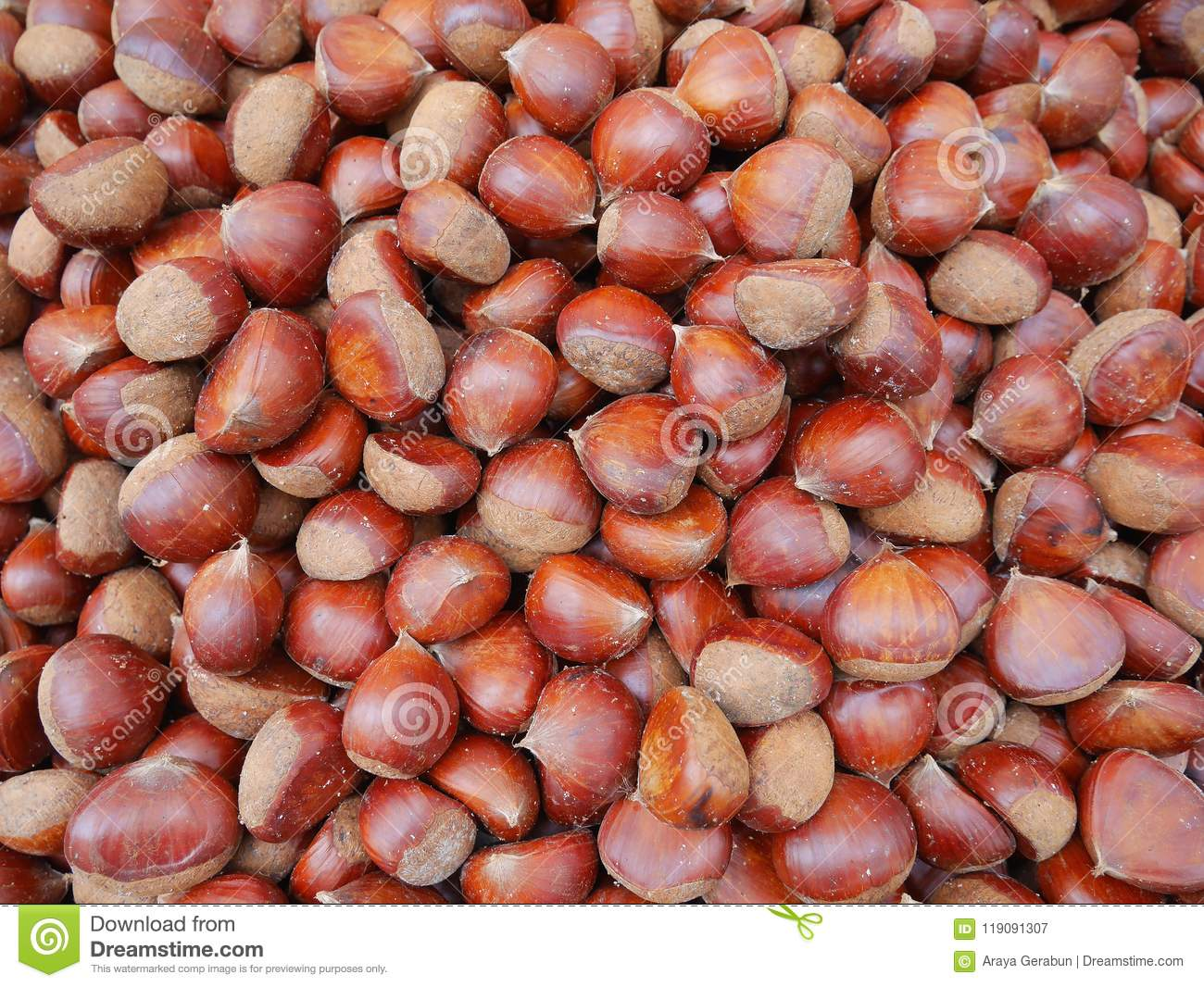 Sweet chestnuts, edible chestnuts inedible ones are called horse chestnuts salt roasted, are healthy and delicious snacks