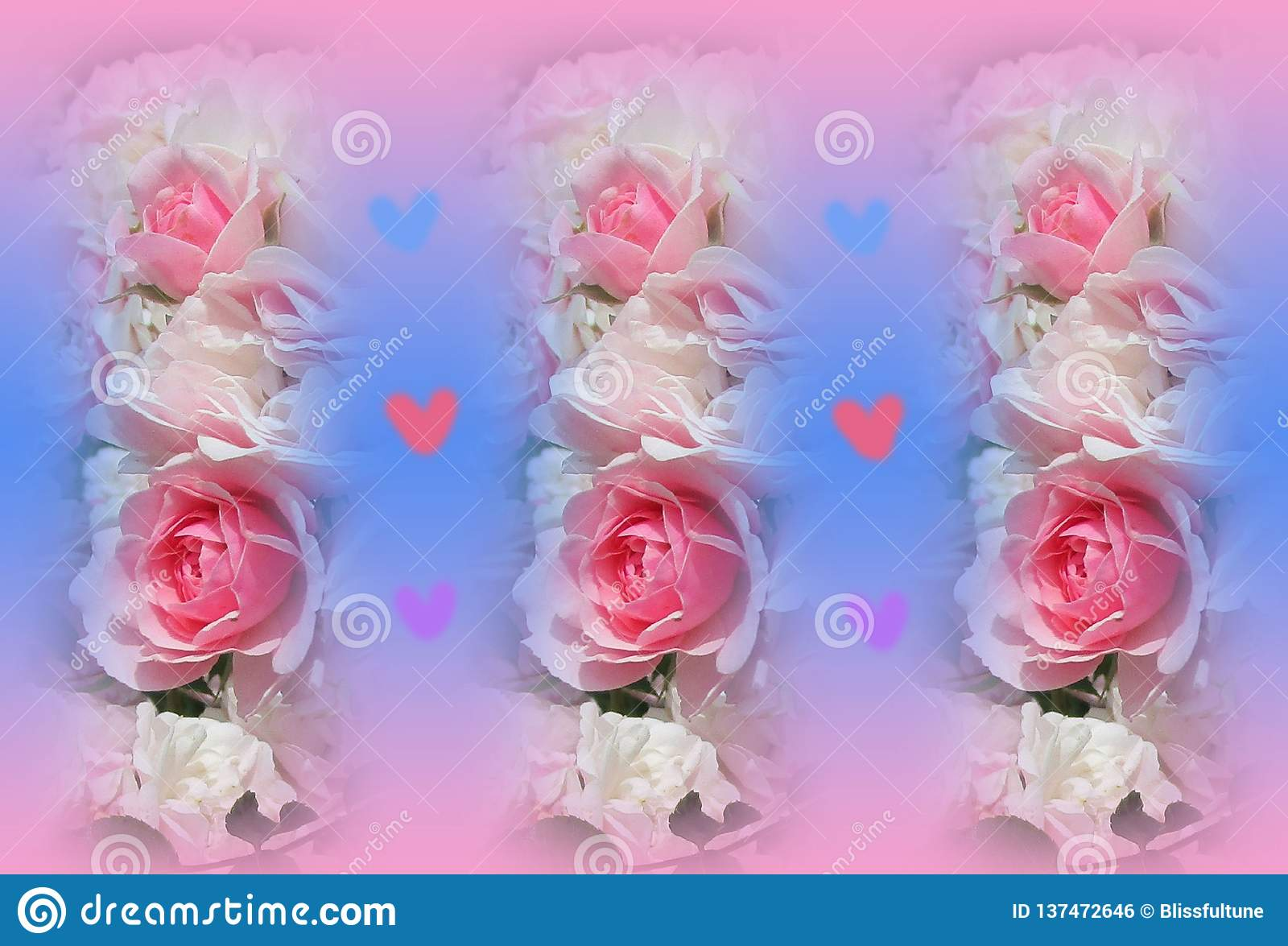 Colorful Pink And White Bonica Roses Wallpaper Stock Illustration