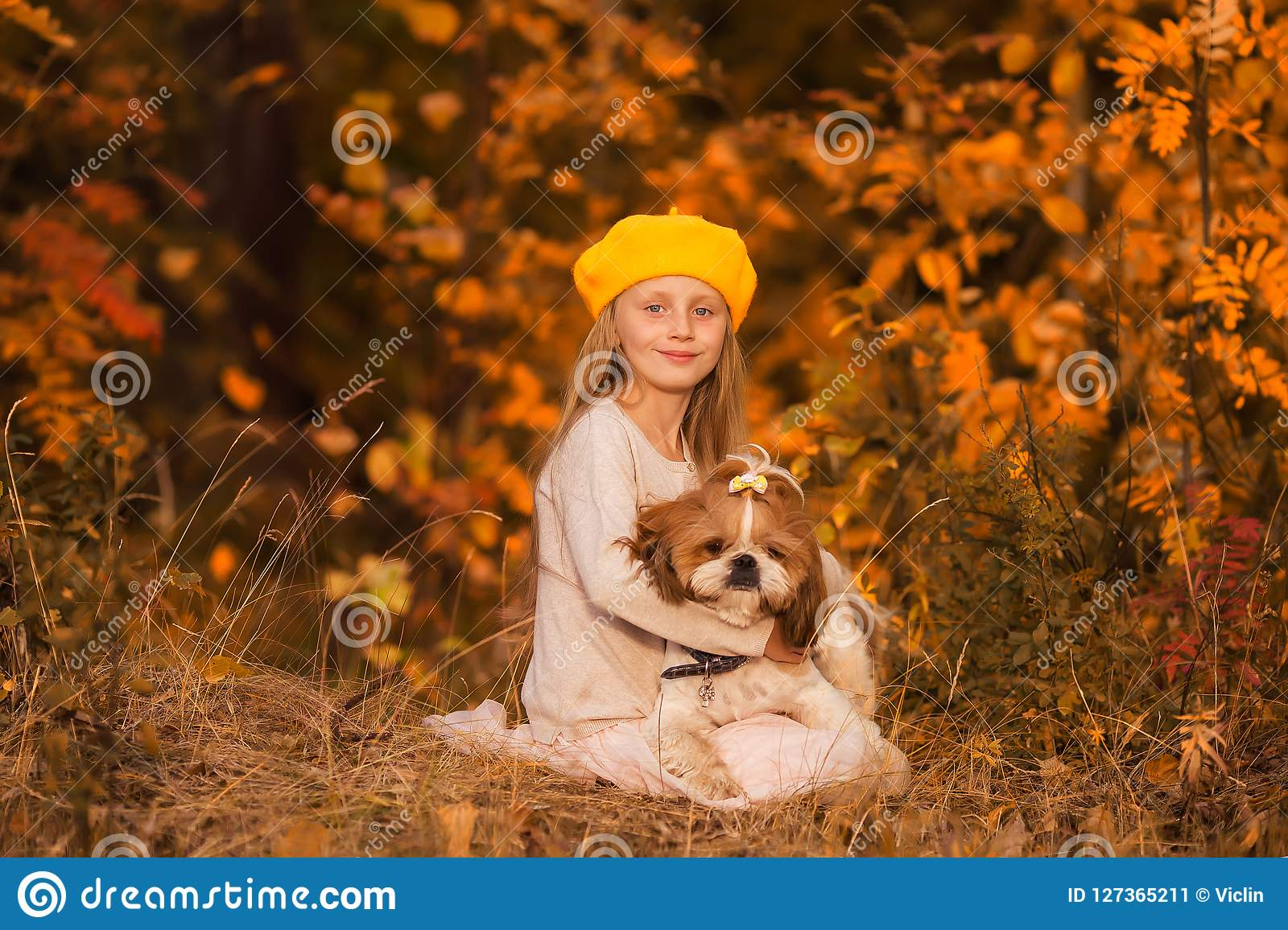 Sweet girl hugging dog shih tzu in the autumn forest.