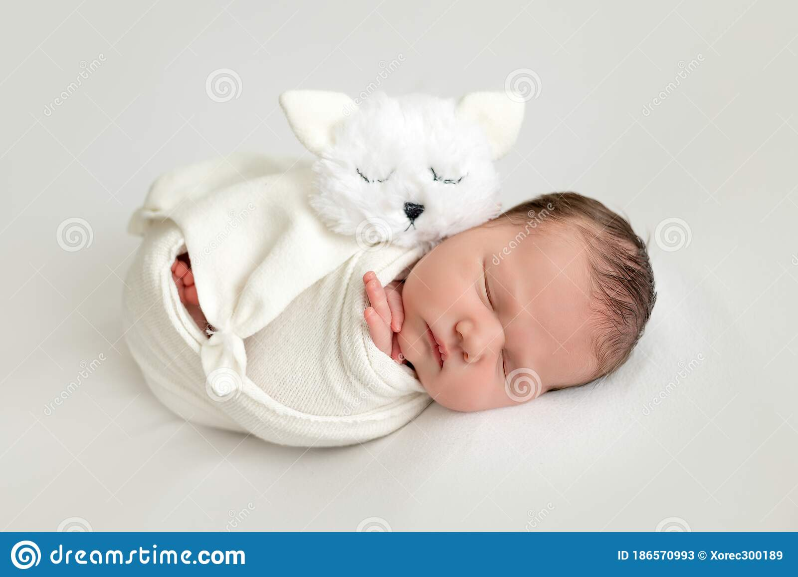 Sweet Newborn Baby With A Toy Cat On A White Background Swaddle The Baby Place For Text Stock Image Image Of Newborn Childhood 186570993